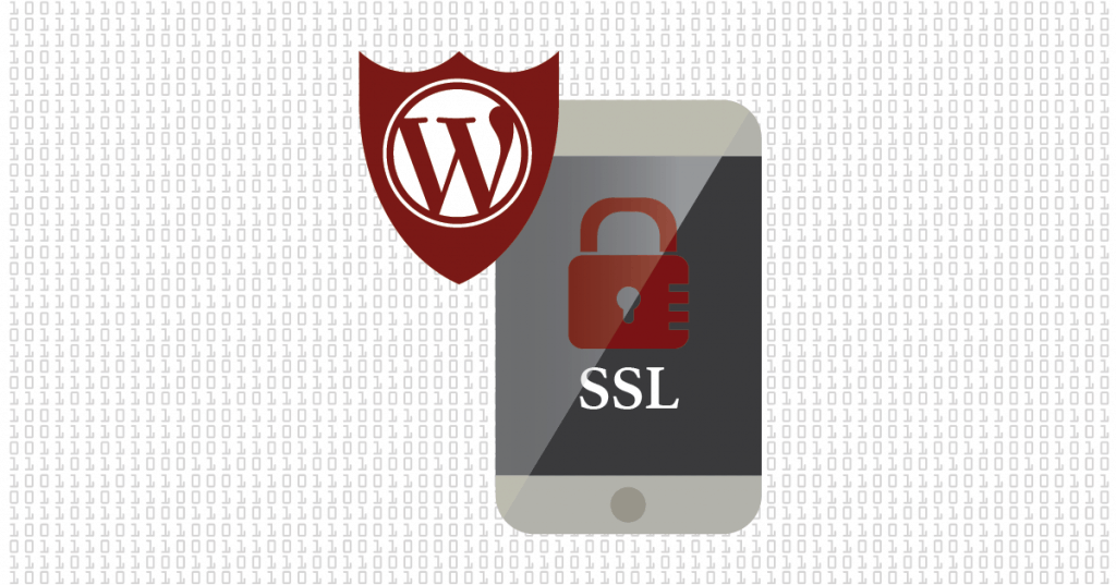 WordPress SSL is Important for Mobile | Turkey Burg Creative