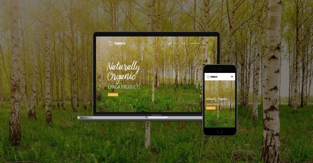 TRUNOTRH Chaga website development