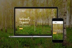 TRUNOTRH Chaga website development